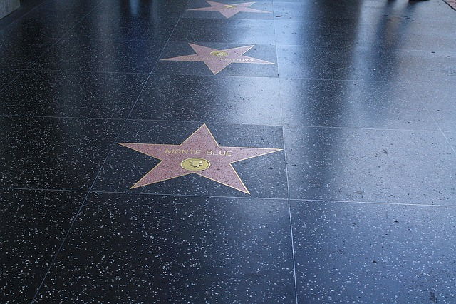 What Should I Do in Hollywood?