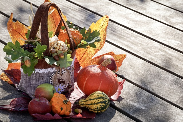 English Idioms and Vocabulary Related to Thanksgiving